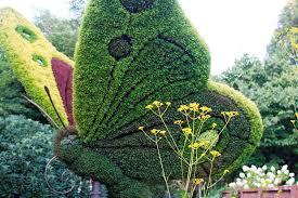 World Botanical Gardens Frolicking In The Atlanta Botanical Gardens Bethany Clark