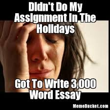 Write Your Own Meme - didn t do my assignment in the holidays create your own meme