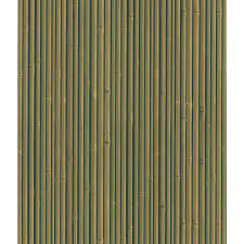 national geographic bamboo wallpaper 405 49457 the home depot