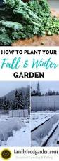 15382 best grow a winter garden images on pinterest winter