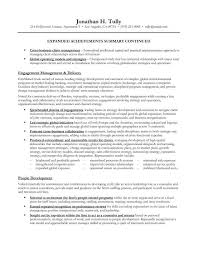 Resume Summary Samples by 28 Summary Of Achievements Resume Examples Annual