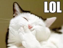Make Your Own Cat Meme - 10 internet memes that can still make you laugh technogog