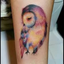 collection of 25 grey owl on upperback