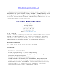 Sql Server Developer Resume Sample Resume Sample Web Developer Resume