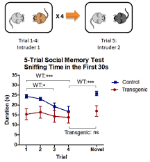 med si e social five trial social memory test behavioral and functional