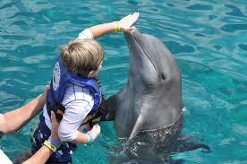 top outdoor adventures in costa rica for kids minitime