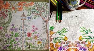 artist draws coloring books for adults and sells million