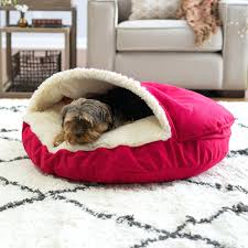 Dog Beds Galore 17 Best Images About Diy Dog S On Doggies Puppy