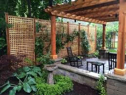 Privacy Backyard Ideas by 340 Best Privacy Solutions For Yard Images On Pinterest Backyard