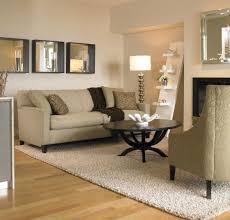 Large Modern Rug by Living Room Brown Elle Decor Living Rooms Modern Concept All