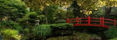 japanese garden pictures irish national stud japanese gardens
