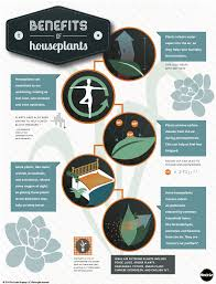 Benefits Of Houseplants | the benefits of houseplants an infographic indoor gardening