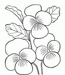printable coloring pages flowers flower printable coloring pages page printable coloring sheets