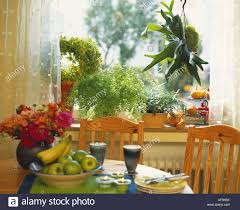 window table for plants table with crockery fruit and flowers plants in window stock photo