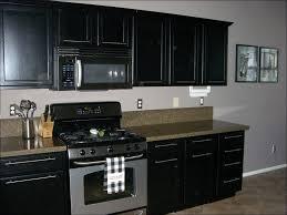 kitchen kitchen paint schemes grey cabinets kitchen painted