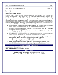 executive resume summary examples sample of finance resume free resume example and writing download it engineering sample resume page 2