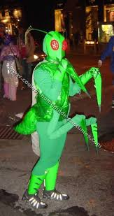 104 best insect costumes images on pinterest costume ideas