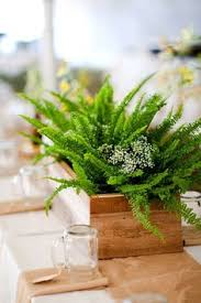 Potted Plants Wedding Centerpieces by Mix Of Vases And Potted Plants Centerpiece Google Search June