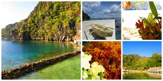 lexus company palawan wandering from the islands wander by the sea should you