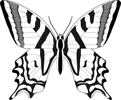 simple black and white butterfly clipart 1 butterflies