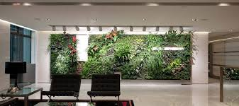 plants for office the many benefits of office plants sustainable business toolkit