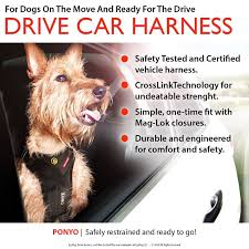 Comfort Pet Certification Amazon Com Ezydog Drive Dog Car Harness Crash Tested Us Fmvss
