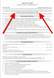 Profile On Resume Examples by Good Resume Opening Statements