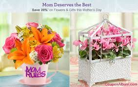 mothers day flowers 20 get 20 1800 flowers s day flowers gifts online