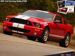 2010 mustang shelby gt500 for sale ford 2010 ford mustang convertible shelby 500 ford shelby