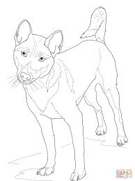 new guinea singing dog coloring page free printable coloring pages