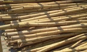 quality bamboo and asian thatch bo bamboo pole 001 bamboo cane