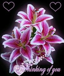 thinking of you flowers thinking of you ecard