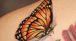 monarch butterfly design meaning pictures