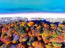 fall colors lake michigan beauty west michigan photograph