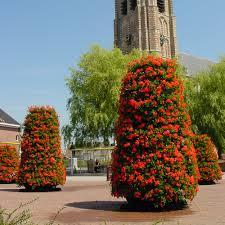 vertical garden diy tower kits u2014 eden now instant vertical gardens greenwall