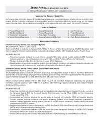 expert tips on resume principles it security resume cyber and information exle tips zipjob 9