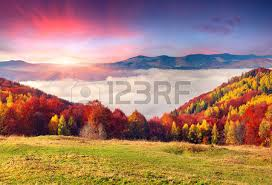fall foliage images u0026 stock pictures royalty free fall foliage