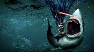 shark wallpaper hd wallpaper wiki