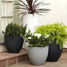 modern indoor plant pots uk quicklook modern plant pots canada