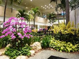 home interior landscaping ideas