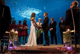 cheap places to a wedding 15 best places to get married in ta fl everafterguide