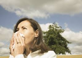Can You Go Blind By Looking At The Sun Why Looking At The Sun Can Make You Sneeze Pbs Newshour