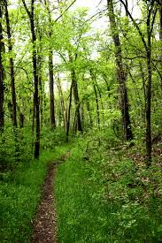 park trails missouri state parks
