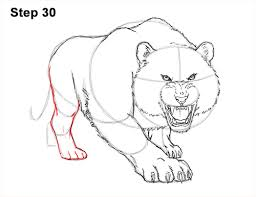 how to draw a tiger roaring