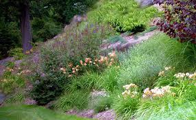 www landscape design advice com front yard landscaping ideas html