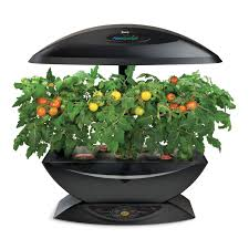 Indoor Herb Garden Kit Australia - black aerogarden with herb kit amazon co uk garden u0026 outdoors
