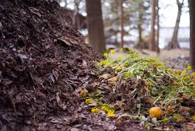 scrap that smell 5 tips for a pleasant backyard compost pile