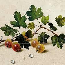 a branch of gooseberries f tolstoy tile mural kitchen backsplash