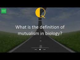 what is the definition of mutualism in biology youtube