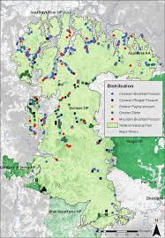Ural Mountains On World Map by Aboriginal Rock Art Depictions Of Fauna What Can They Tell Us